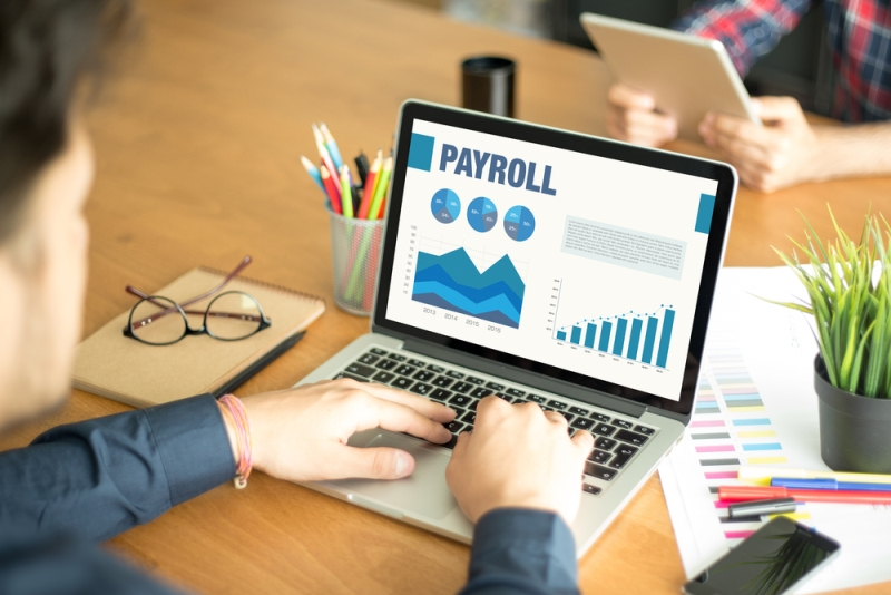 What Is Payroll Management System